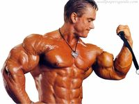 Bodybuilders-Wallpapers-0102